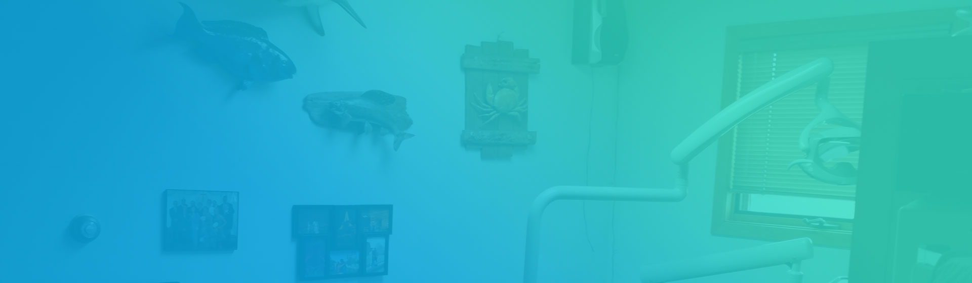 fish-bg2